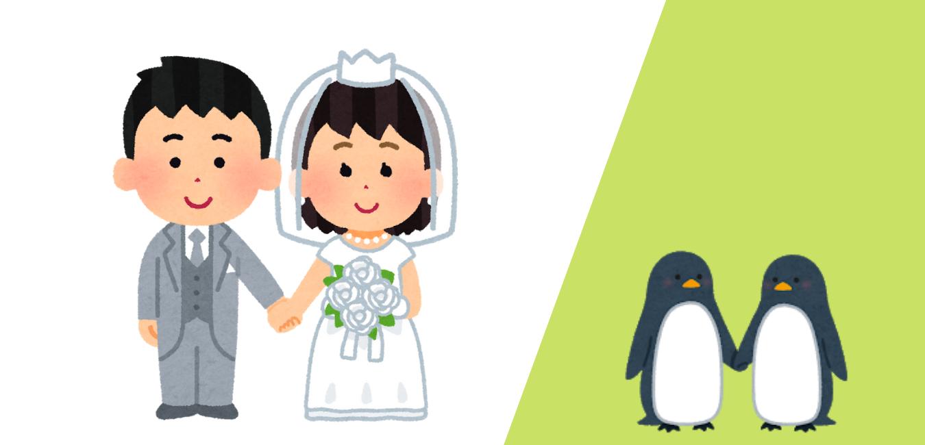 日本人妻の生活日記